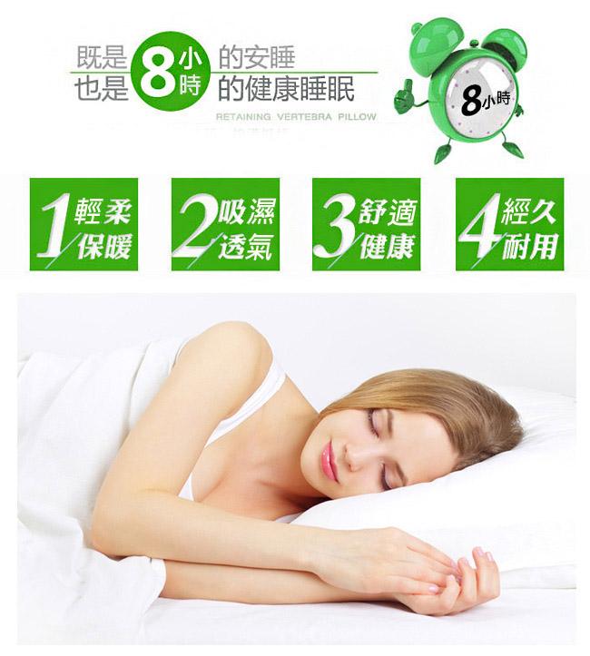 【FOCA】飯店專用-經典緹花100%水鳥羽毛枕(超值買一送一)