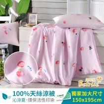 鋪棉涼被/四季被5X6.5尺|100%奧地利天絲|我是莓莓
