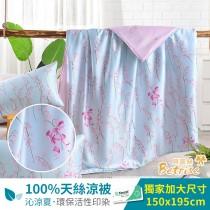 鋪棉涼被/四季被5X6.5尺|100%奧地利天絲|青荷