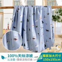 鋪棉涼被/四季被5X6.5尺 100%奧地利天絲 快樂時光-藍