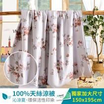 鋪棉涼被/四季被5X6.5尺 100%奧地利天絲 霜晨