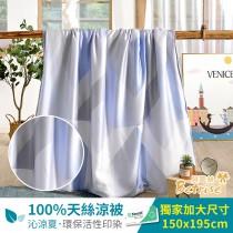 鋪棉涼被/四季被5X6.5尺|100%奧地利天絲|城市藍調