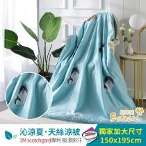 鋪棉涼被/四季被5X6.5尺|3M專利天絲吸濕排汗|追夢